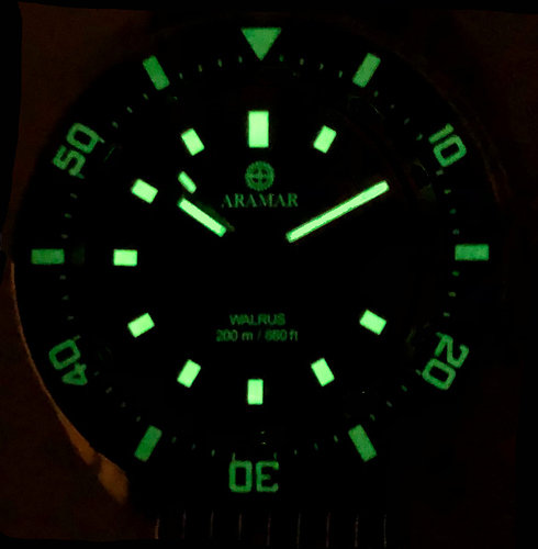 Walrus orange lume