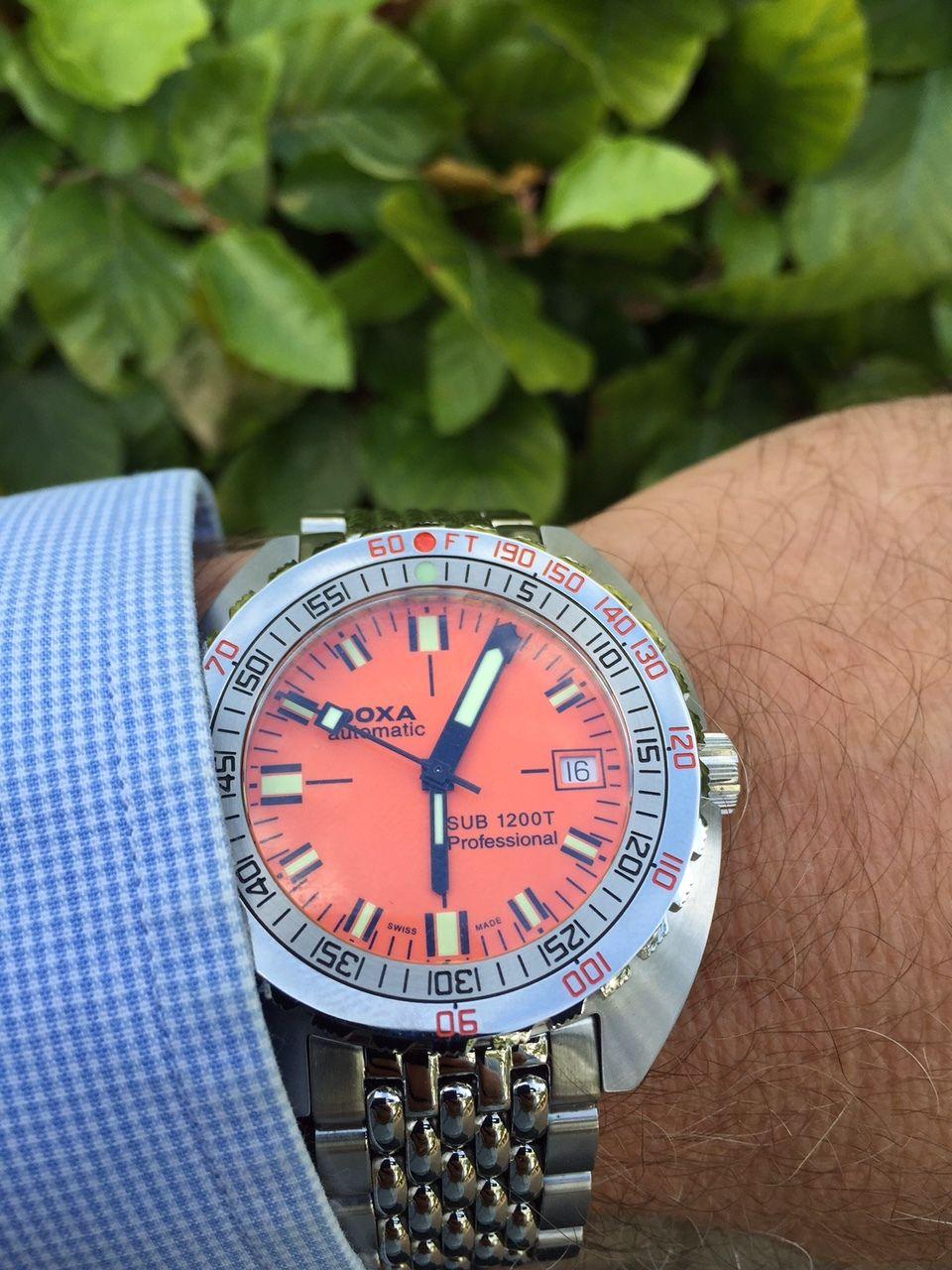 Nieuwe aanwinst doxa sub 1200t algemene horlogepraat het forum voor - Kleur voor levende ...